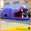 Despedida de salto inflable del hipopótamo vivo (AQ02309)