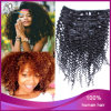 Agrafe crépue d'Afro de cheveux de Vierge de Brésilien de 100% dans la prolongation de cheveux