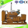 100kVA 80kw Natural Gas Generator Set