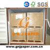 58GSM Offset Printing Paper en la Hoja para el Ejercicio Producción libro