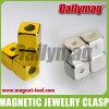 De magnetische Greep van Juwelen (PM)