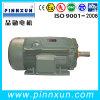 Qualität! WS-elektrischer Gummiwaschmaschine-Motor