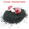 Carbonio attivato a base di carbone per decolorazione