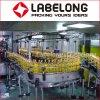 Barril del aceite de mesa 5L 10L y máquina de embotellado