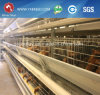 Tipo automatico gabbie automatiche della batteria H di strato/pollastra dell'uovo del pollo