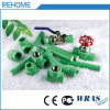 Heißes Wasserversorgung-Rohr des Verkaufs-1.6MPa 32mm grünes PPR