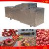 L'olive de cerise d'acier inoxydable date la machine de piqûre de corrosion dénoyauteur électrique de cerise
