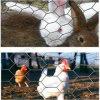 Engranzamento de fio sextavado para o engranzamento da galinha