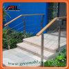 Diseño al aire libre de la barandilla del acero inoxidable