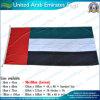 I UAE diminuiscono, bandierina degli Emirati Arabi Uniti (NF05F09054)