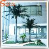 Palm van de Kokosnoot van de Glasvezel van Guangzhou de In het groot Kunstmatige