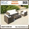 Sofá determinado del sofá al aire libre fijado/sofá de los muebles (SC-B9508-H)