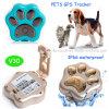 ペットか犬または猫(V30)のための小型2g GSMネットワークGPS追跡者