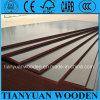 madera contrachapada hecha frente película del álamo de 21m m/madera contrachapada de la construcción para el encofrado/el tablero laminado