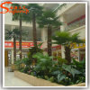 Indoor Decorative Artificial Tissue Culture Palm Tree