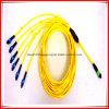 MPO/MTP het optische Koord van het Flard van de Vezel voor ATM, het Netwerk van de Gegevensverwerking