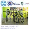 جيّدة عمليّة بيع درّاجة عرض حامل قفص درّاجة تخزين حامل قفص