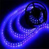 Illuminazione di nastro impermeabile chiara di SMD 5050-60 LED