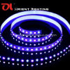 Luz de tira flexible de SMD 5060+2835 RGB+W Strip-96 LEDs/M LED