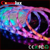 DC12V Epistar IP67 5050 60LED/M LED Strip Lamp