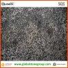Luxuriöser Meteorus Granit für Spitzenwohnungs-Innendekoration