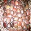 Украшение плитки высокого качества красное