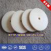 Изготовленный на заказ шестерня шпоры Nylon/PA/POM пластичная (SWCPU-P-G320)