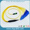 Cavo di zona ottico delle fibre del duplex di singolo modo MPO-Sc12