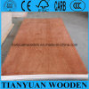 4X8 Inch Cheap Price Container Plywood