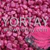 Nuevo polvo del pigmento de la perla de la capa de la semilla de Rose de la granja