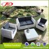 Sofá do Rattan, jogo do jardim, mobília do Rattan (DH-8340)