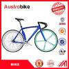 Preiswerte Großhandelsqualität 700c 26inch weißes und blaues Farben-Straßen-Fahrrad-örtlich festgelegtes Gang-Fahrrad-Fahrrad-örtlich festgelegter Gang für Verkauf mit Cer