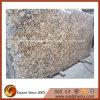 Grote Plak van het Graniet van Brazilië Delicatus de Gouden