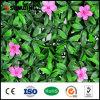 가정 뜰을 만드는 싼 자연적인 녹색 인공 꽃 플랜트 산울타리