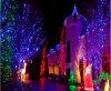 Lumière extérieure de rideau en réseau de décoration de Noël de vacances de DEL