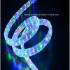 Indicatore luminoso di striscia impermeabile di alta tensione LED di colore di RGB di fabbricazione 3528