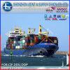 유럽에 LCL DDP Sea Freight Shipping Cost 중국