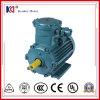 AC de Motor van het ex-Bewijs van de Fase van de Inductie met Energie - besparing