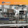 embotelladora pura de agua de la botella del animal doméstico 4L (series de CGN)