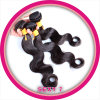 Kbl 100%年のRemyの毛のよこ糸