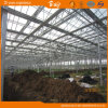 광대하게 이용된 장기 사용 경간 Venlo 유리 온실