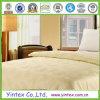 Qualität Popular Warm und Soft Mulberry Silk Duvet