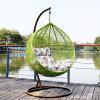Зеленая вися мебель ротанга стула &Swing, корзина ротанга (D011)