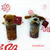 De Gift van de Teddybeer van de pluche