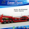 3 assi 50-80 tonnellate di Lowbed semi di rimorchio del camion (LAT9405TDP)