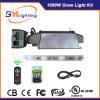 1000W CMH растут светлый набор для шарика 1000With860/630W CMH