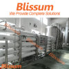 Industrie-umgekehrte Osmose-gereinigtes Wasserbehandlung-System