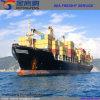 Preiswerter Seeverschiffen-Service für Dubai