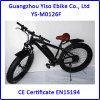 bicyclette électrique de grosse neige de 36V 500W avec le moteur actionné arrière de C.C
