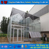 Estufa de vidro personalizada do sistema alta qualidade hidropónica para Aquaponics
